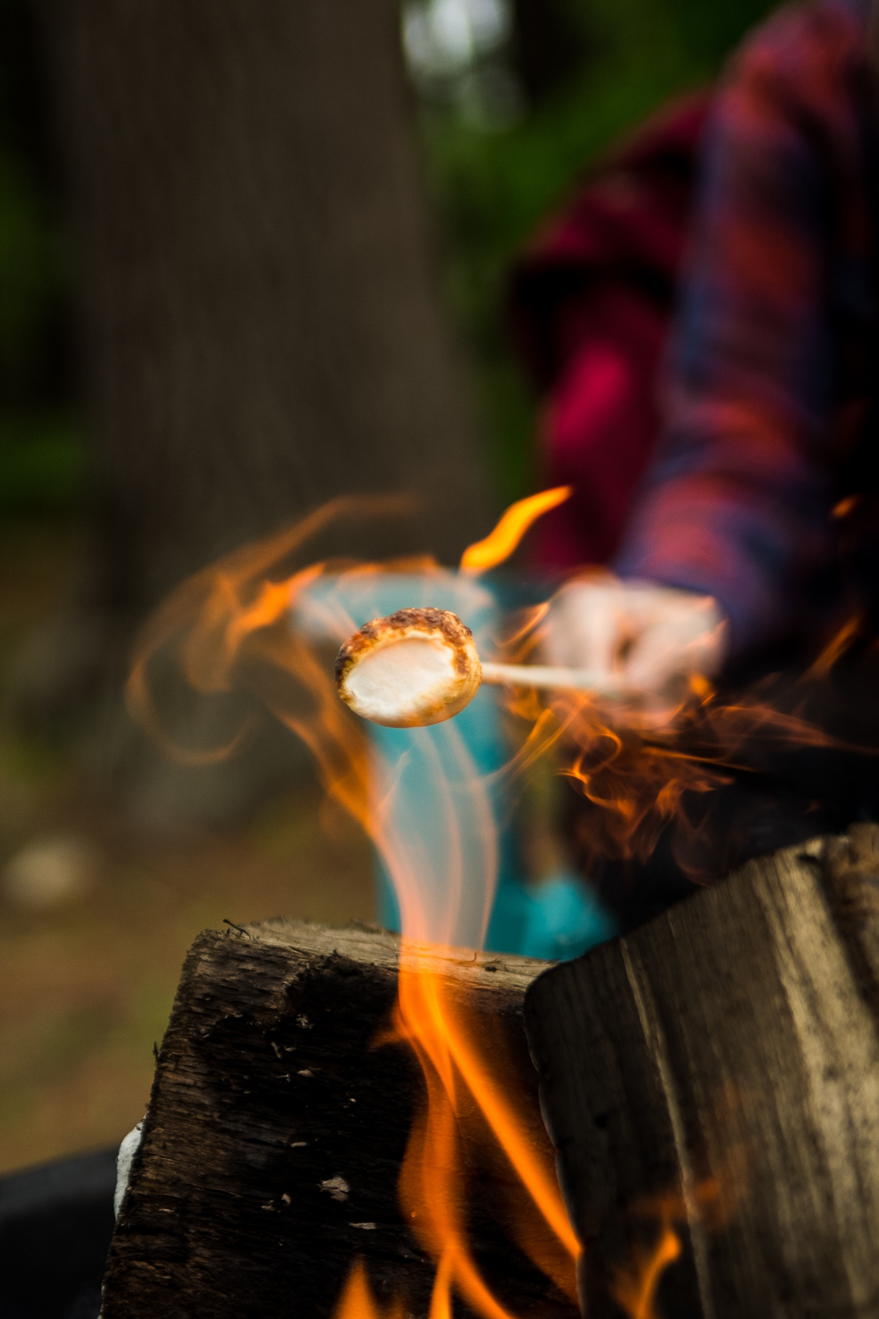 We present to you the summer guide for making s'mores.