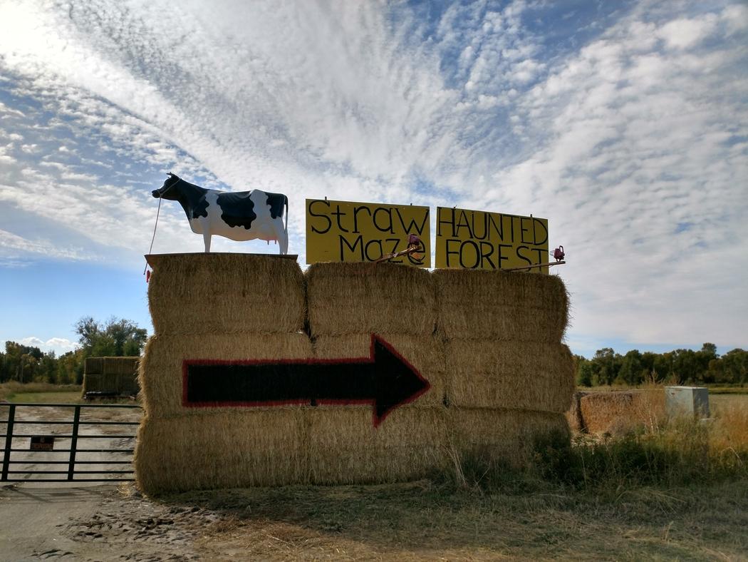 The Rexburg Straw Maze is open through October.