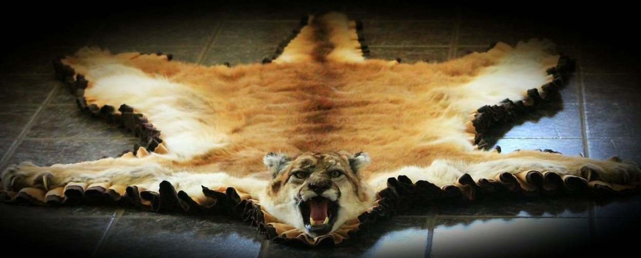 A rug from Wild to Wall Taxidermy.