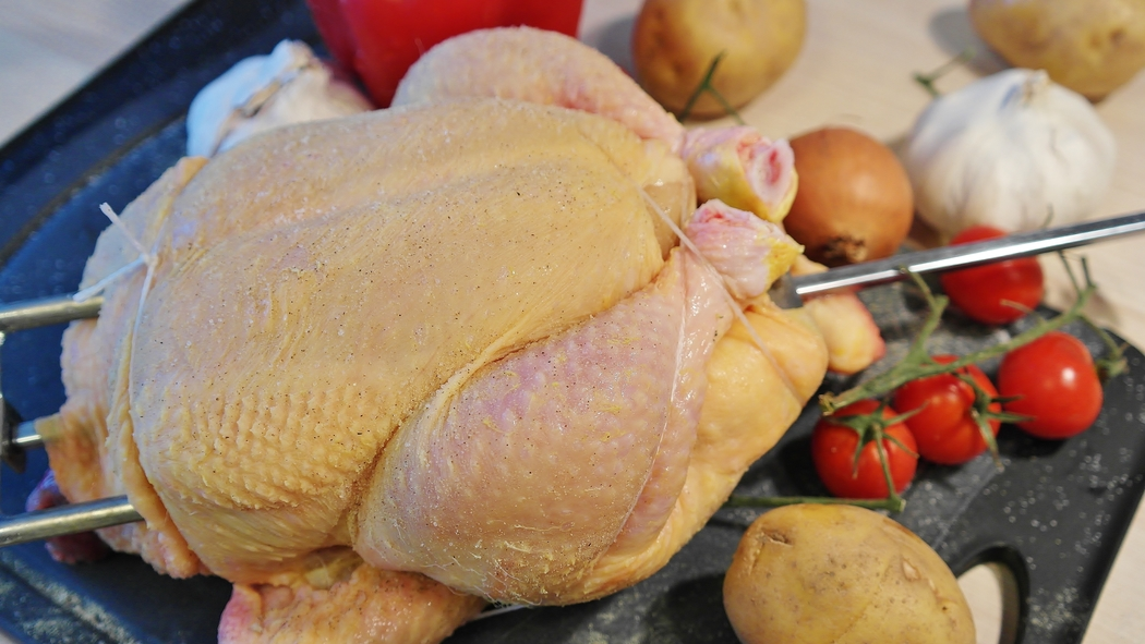 What would be Thanksgiving without the turkey?