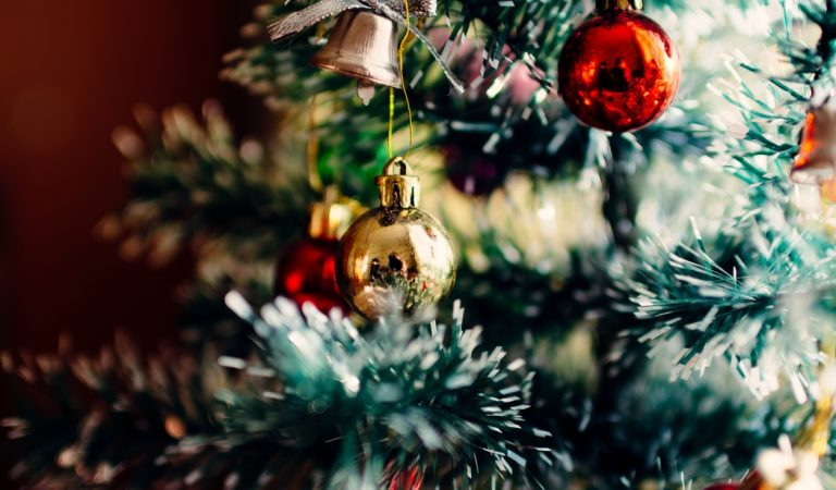 Where To Find Christmas Trees In Rexburg