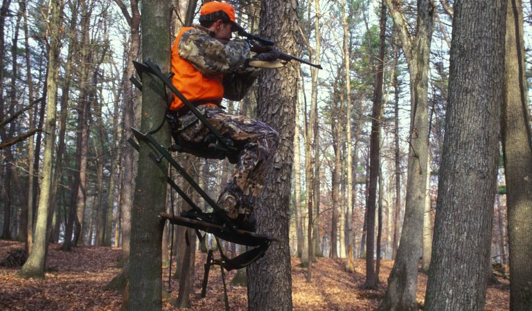 An introduction to hunting for 2018