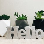 Dollar Tree hacks to make cute planters