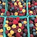 Idaho Falls Farmer's Market