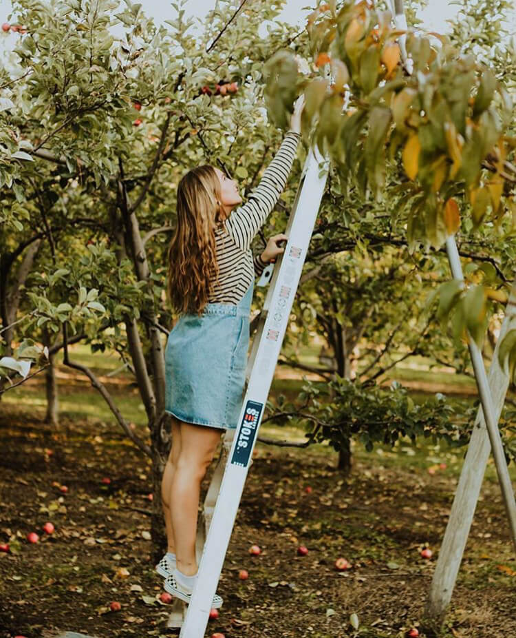 Apple picking is one of the great fall date ideas