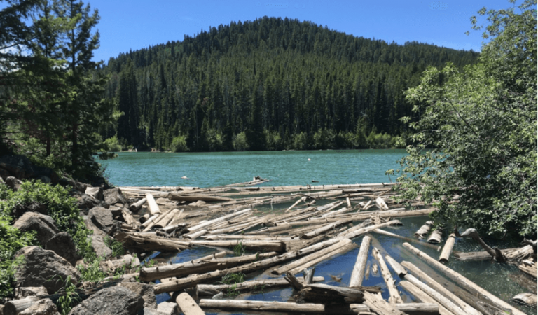 Plan Your Day Trip to Packsaddle Lake