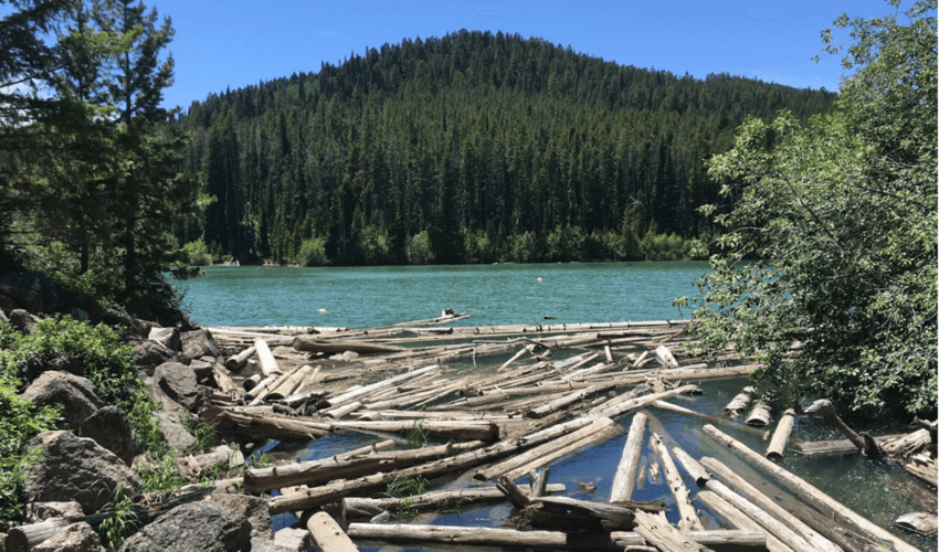 Packsaddle Lake