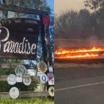 Paradise Online Auction Fires