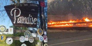 Paradise Online Auction Fires