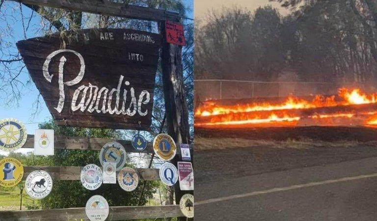 Paradise families lose homes in fire, launch online auction, Go Fund Me