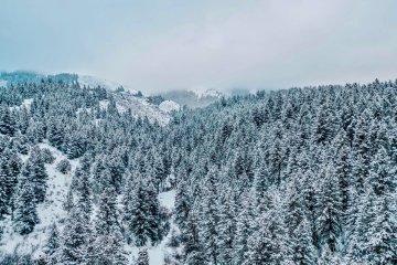 Rexburg Snow