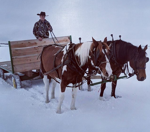 Take A Country Sleigh Ride This Christmas