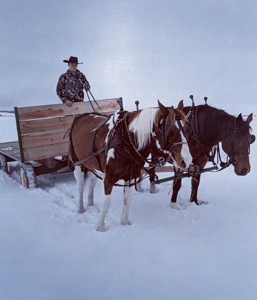 Country_Sleigh_Ride_Christmas