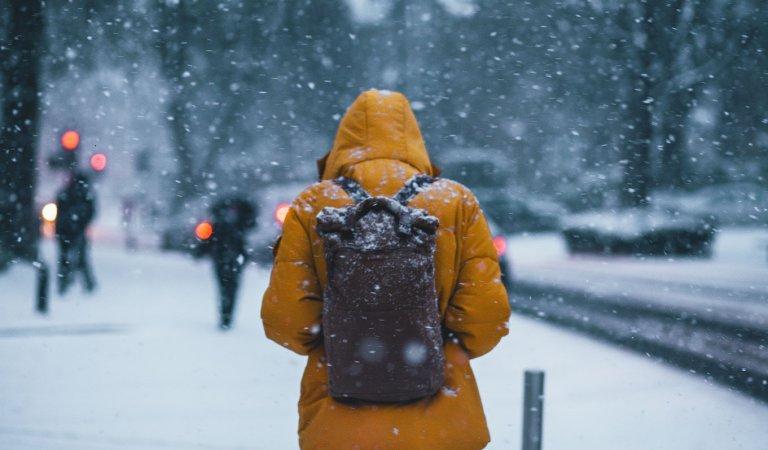 Rexburg Weather: 2019 Annual Temperatures & Precipitation