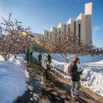 BYU-Idaho Enrollment Winter 2020