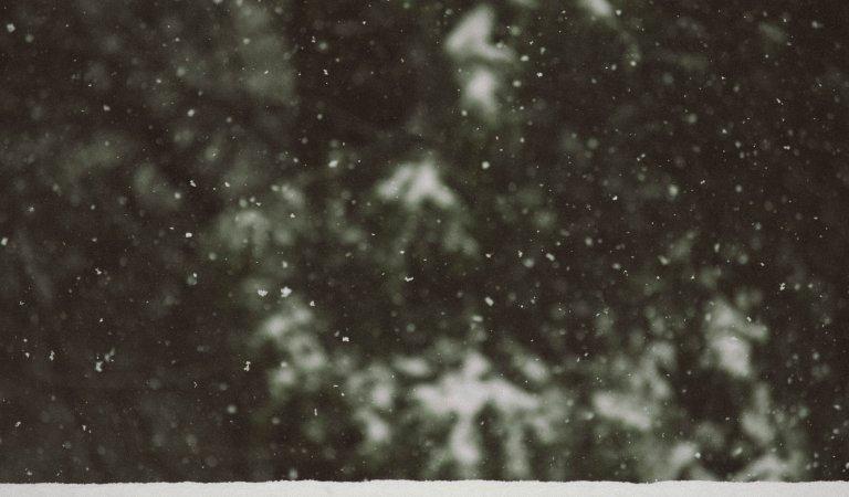 Warnick Weather Flash: January 2020 Precipitation